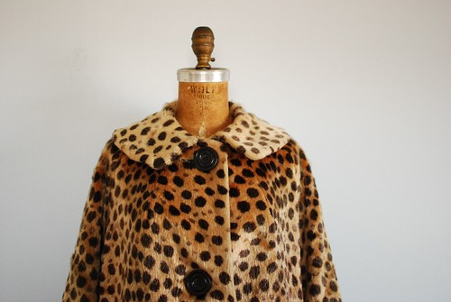 cheetah coat 2