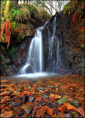 Waterfall Birnam Hill (angus clyne) Tags: red colour green fall water stone flow dawn scotland waterfall moss very hill perthshire filter lee hdr birnam flikcr leefilters colorphotoaward