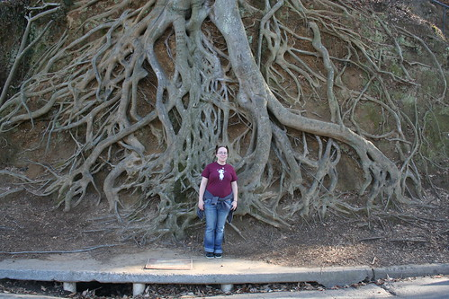 Danni and Giant Roots