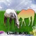 Goodlife2Go