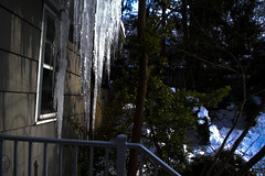 DSCN0160 (John Moffett) Tags: icesickles