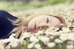 A lazy spring morning (Fabio Sabatini) Tags: flowers primavera daisies canon 50mm spring dof bokeh f14 depthoffield daisy alessandra ربيع ボケ 暈け