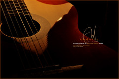 Guitar feelings (Abdulla Attamimi Photos [@AbdullaAmm]) Tags: music playing macro photography photo nikon play photos guitar song feel photographic feeling nikkor 13 2008 tones tone songs apr feelings 2010 abdulla abdullah amm عبدالله جيتار 13april d90 musics guitara 13apr عازف tamimi mywinners التميمي موسيقى وتر موسيقي مزيكا أوتار attamimi موسيقية عزف موسيقار آلات إبريل تميمي قيتار guitarh موسيقيه desamm abdullahamm abdullaamm desammcom desammnet 1342010 altamimialtamimi guitarah قيتاره جيتاره درقندرقن درقن دنق دونق معازف abdullaattamimi abdullahattamimi wwwabdullaammcom wwwabdullaammnet