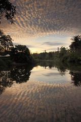 Melbourne Botanical Gardens (kth517) Tags: australia melbourne victoria 澳洲 墨爾本 melbournebotanicalgardens 維多利亞州 墨爾本植物園