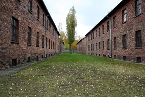 Auschwitz - 33