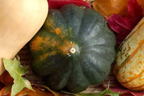 A trio of winter squashes by Eve Fox, Garden of Eating blog