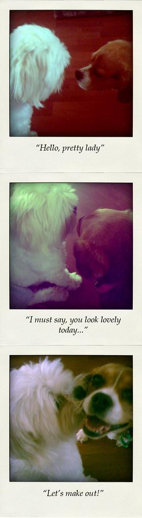 20091220 Sam & Lucy