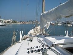 2009-09-27 Sailing Coronado 002 (curtiskastner) Tags: sandiego coronado coronadobridge sandiegobay 20090927sailingcoronado