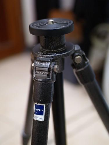 P1253619