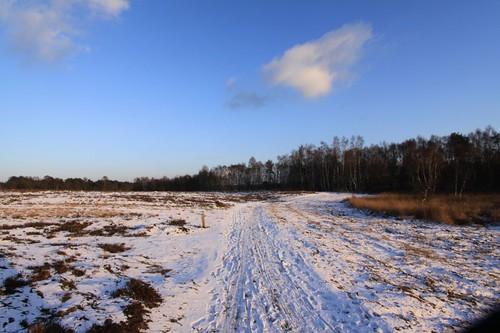 It was a beautiful winter day in Ter Molen...