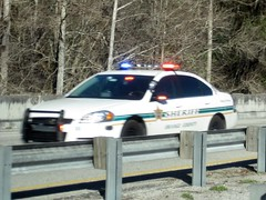 "Orange County Sheriff - ""Code 3"" 352 ? (FormerWMDriver) Tags: county orange 3 chevrolet car sedan lights moving office code florida police chevy rush cop vehicle law fl enforcement sheriff hurry flashing impala emergency cruiser patrol sirens so ocso"