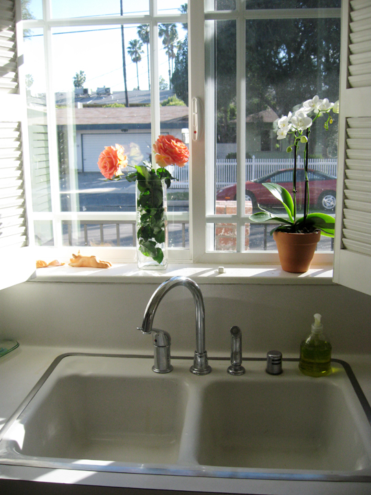 kitchen sink-new faucet-galley kitchen