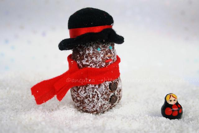 tartufi al cioccolato e cocco con biscotti secchi