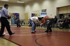Mongolian New Year Wrestling
