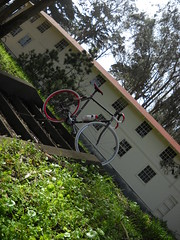 In the forest (J.B. Davis) Tags: sanfrancisco california bike track masi nekkid ltd presidio speciale