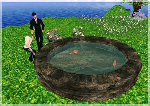Review - Pocket Gardens - Castalia Basin with Koi, large