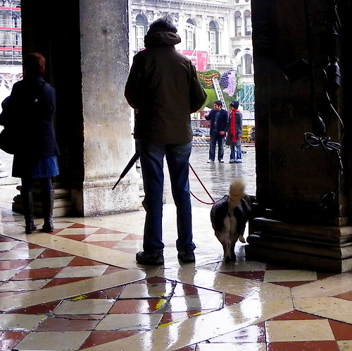 Venice - Walking The Dog