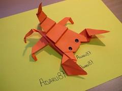 Origami Contest