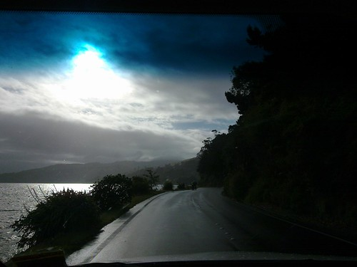 Winding Dunedin road with electric blue sunlight