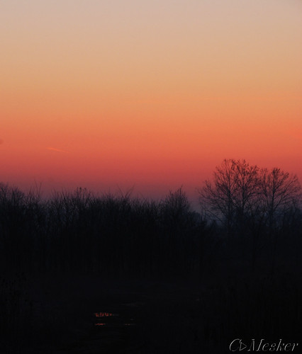 Kentucky Dawn - 89/365