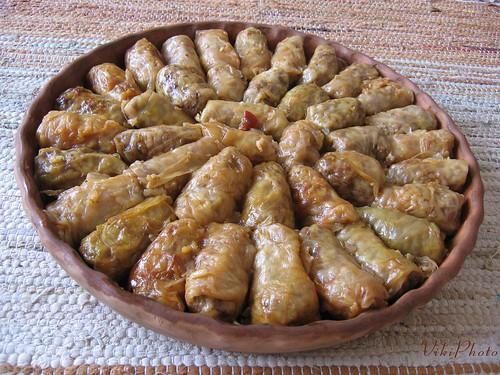 Gjelle Te Ndryshme Shqiptare