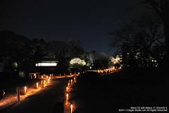 SUV_8752 (Cougar-Studio) Tags: castle nikon kyoto 京都 d3 nijo 二条城 nijocastle 世界遺產 元離宮 20110404