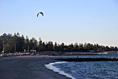 2017 Sydney: Botany Bay #14 (dominotic) Tags: sydney nsw australia newsouthwales 2017 botanybay beach brightonlesands ladyrobinsonsbeach