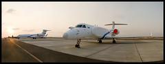 Panorama: IDFAF Gulfstream G500 & G550 (NGPhoto.biz) Tags: panorama airplane aircraft aviation aeroplane ng  gulfstream g500 palne iaf ngp g550  sigint  cema nehemia   gershuni   eitam       idfaf ngphoto  ngphotography afidf aisis   caew