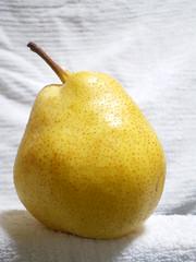 洋梨 Pear (European Pear)