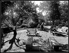 A Bite Outdoors... (ronramstew) Tags: uk trestle autumn trees england people food playing grass bench children table picnic cheshire drink eating drinking tables benches relaxation 2008 pleasure trestles noughties