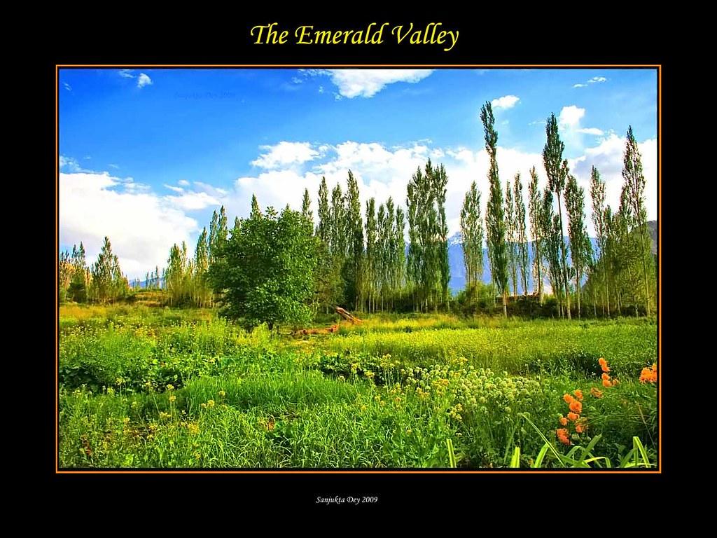 Garden View, Hotel Yarab Tso, Tegar Village, Nubra Valley, Ladakh, Jammu & Kashmir, India - 24.08.09