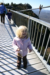 Anna on the Grandfather Mtn swinging bridge