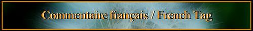 BannièreComFranc-PSF-1