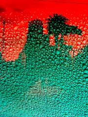 condensaciones cruzadas (meetzoobeeshe) Tags: red verde green water photoshop uruguay drops rojo edificio palmeras gotas antena montevideo condensacin cruzadas 3cruces meetzoobeeshe condensaciones condensacionescruzadas