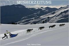 Alpen-Trail: Marte Heilemann