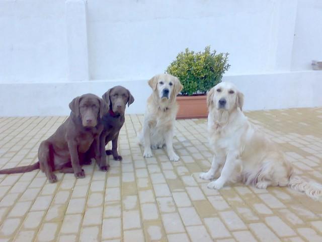 Família Feliz | Quinta Monte dos Vendavais