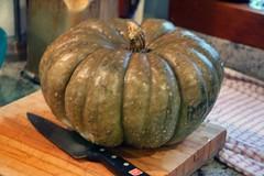 jarrahdale pumpkin on the board