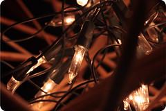 Desenredmonos (>> AmbuLanTe _) Tags: canon navidad colombia xsi ambulante