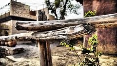 Fence (schaazzz) Tags: pakistan bokeh objects islamabad singleexposure tonemapped pseudohdr saidpurvillage sal16105 sonyalpha550 sonya550 schaazzz shahzebihsan