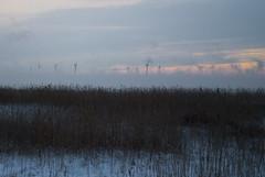 vindkraft1 (Micael Carlsson) Tags: winter sunset lake cold ice nature is blog vinter europa europe fotograf wind sweden natur skandinavien freezing karlstad below sverige scandinavia zero skagen vänern fyr kil hammarö bröllop värmland arvika deje torsby porträtt vindpark sunne hagfors vanern varmland kallt hemsida forshaga vindkraftverk livsstil skagens hammaro värmlan iskallt miccar kristinhamn wwwmicaelcarlssonse wwwmiccarse