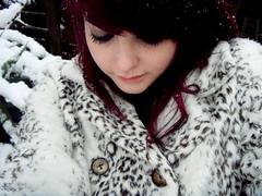 i am a snow leopard! (hool a hoop) Tags: