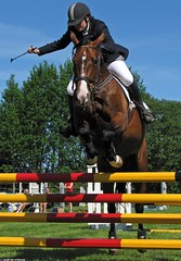 20090531_021_35_ Horse jumping at Askims Fltrittklubb, Gothenburg, Sweden - Fortezza and Camilla Brjesson??? And a whip. (ratexla) Tags: horses people horse cute sports beautiful animal animals sport gteborg person bay pain cool jump jumping eur