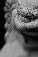 Grinning Lion (belleshaw) Tags: blackandwhite statue stone lensbaby bokeh menacing teeth lion carving eyebrow huntingtongardens foolion lensbabycomposer