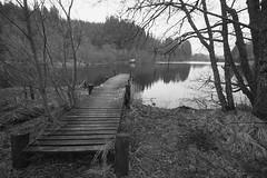 Loch Ard, Trossachs (Hugh Spicer / UIsdean Spicer) Tags: winter scotland february lakeofmenteith trossachs 2010 lochard