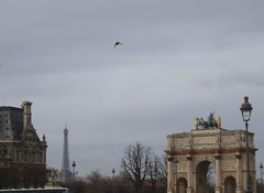 Vol libre  Paris (@ l f) Tags: paris france torre eiffel tuileries vol libre giardini rondine lovre