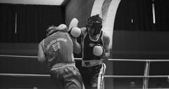 La Nobile Arte (dawgkernel) Tags: black blackwhite fight nikon italia rimini ring boxe ringside d60