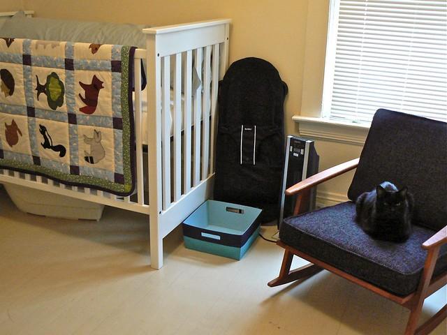 house cat nemo furniture nursery crib