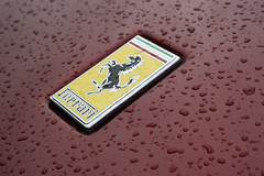 Ferrari Badge - Rain (Alex Penfold) Tags: italien red italy horse cars alex water car rain yellow dark emblem logo photography photo droplets image awesome picture super ferrari exotic photograph badge hyper 2010 prancing penfold
