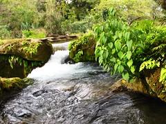 IMG_2720 (Ezniter) Tags: waterfall cascada huasteca sanluispotosi tamul tamasopo