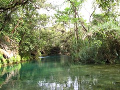 Calmly traveling. (Ezniter) Tags: waterfall cascada huasteca sanluispotosi tamul tamasopo